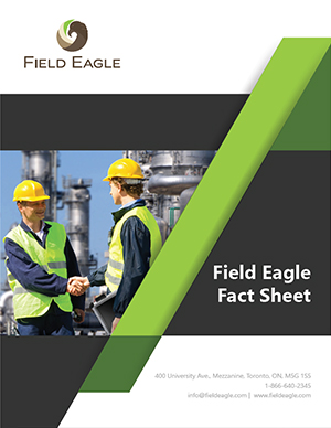 Field Eagle Facts Sheet