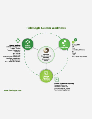 Field Eagle Custom Workflow Infographic