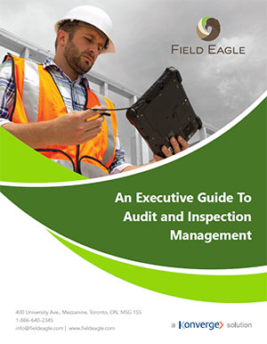 Field Inspection Software - Field Eagle White Paper