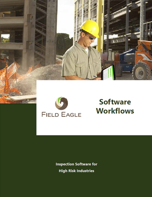 Field Eagle Workflows Sheet
